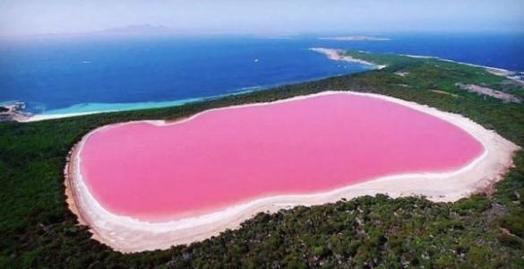 Avustralya'da bir göl pembe renge büründü
